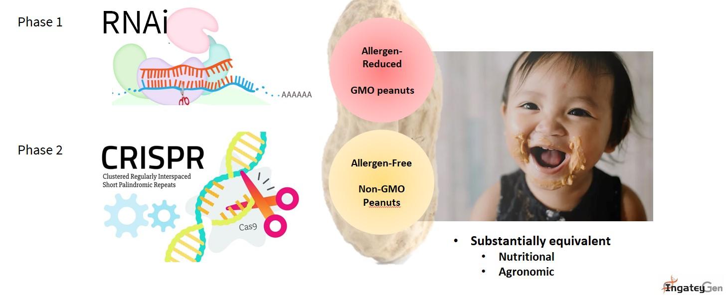 CRISPR Technology